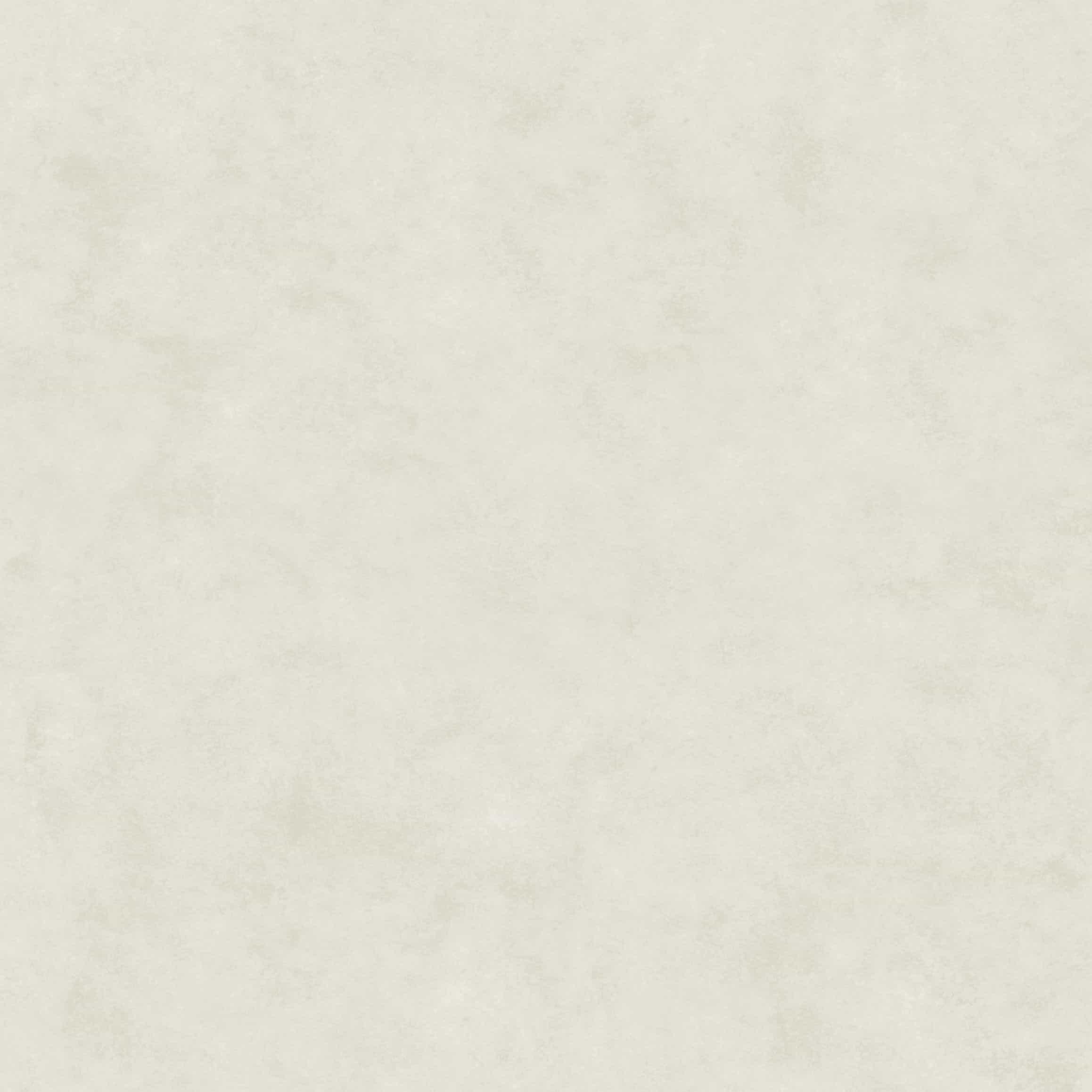 60P005A Titan White