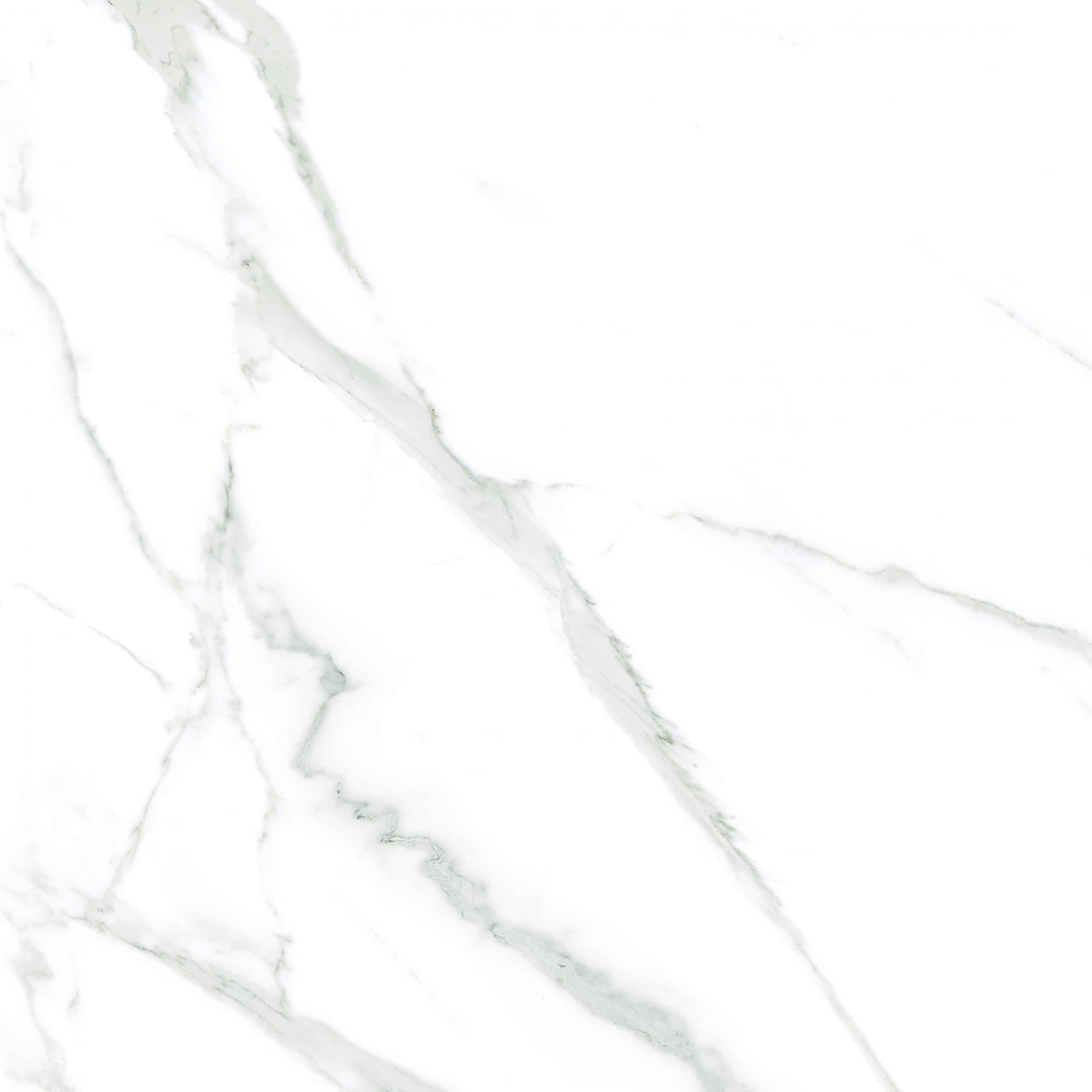 IN-Carrara White